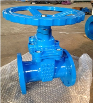 TRADE CHURNER Double Flanged Non-Rising Stem Rubber Seat Gate Valves